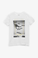 FOX KIDS Boy Skate Graphic Print Tee