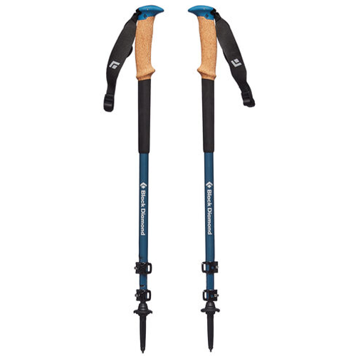 Alpine Carbon Cork WR Poles