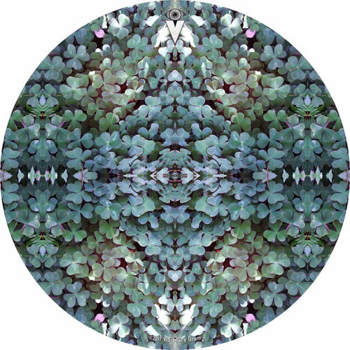 Clover Patch design graphic drum skin by Visionary Drum