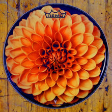 "Dahlia Flower 14"" drum head made by Remo."