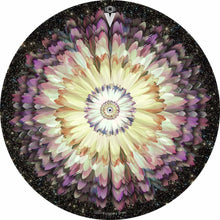 Floral Space design graphic drum skin by Visionary Drum; flower drum art