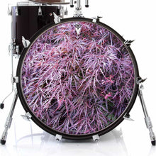 Japanese Maple design graphic drum skin on bass drum head; red leaf drum art
