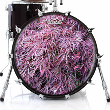 Japanese Maple Design Remo-Made Graphic Drum Head on Bass Drum; red drum art