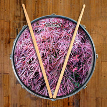 Japanese Maple Design Remo-Made Graphic Drum Head on Snare Drum; tree drum art