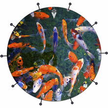 Koi bass face drum banner by Visionary Drum; fish pond drum art