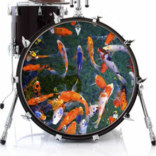 Koi graphic drum skin on bass drum head by Visionary Drum; nature drum art