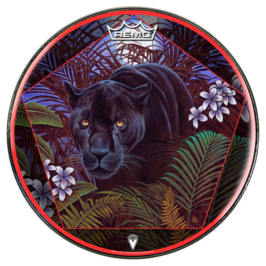 Concentration by Moksha Marquardt graphic Remo drum head; jungle, panther; visionary drum art