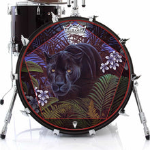 Panther in nature graphic Remo drum head art on bass drum; animal drum art