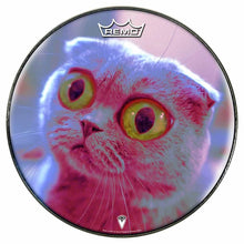 Mr. Peepers Design Remo-Made Graphic Drum Head by Visionary Drum; cat drum art
