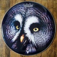 "Owl head 22"" graphic bass drum head by Remo"