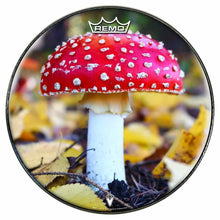 Amanita Mushroom Design Remo-Made Graphic Drum Head by Visionary Drum