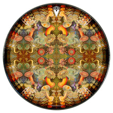 anemone design graphic Visionary drum head