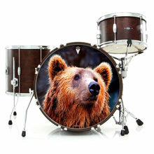 Grizzly bear graphic drum skin art on drum kit