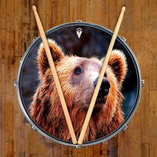 Grizzly bear graphic drum skin art on snare