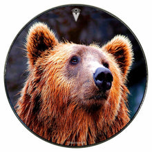 Grizzly bear graphic drum skin mounted to head