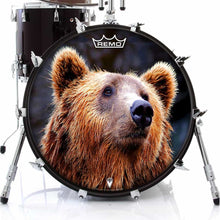Grizzly bear graphic Remo drum head on bass drum
