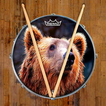 Grizzly bear graphic Remo drum head on snare
