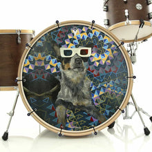 Dog wearing 3D glasses graphic bass drum banner on drum kit