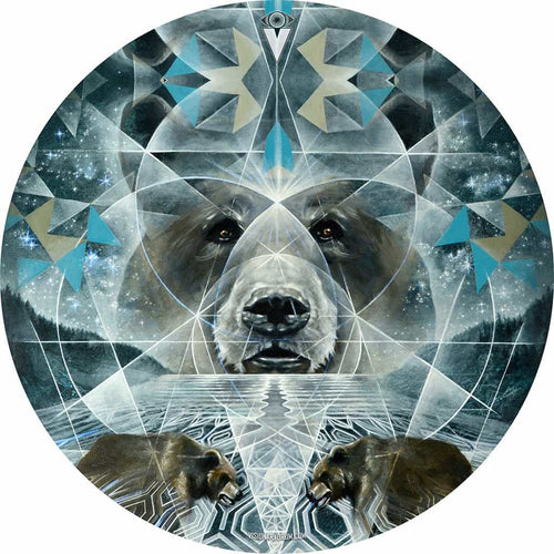 Noble Sillence Abstract Bear Art graphic drum skin by Visionary Drum