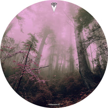 Enchanted Forest drum skin by Visionary Drum