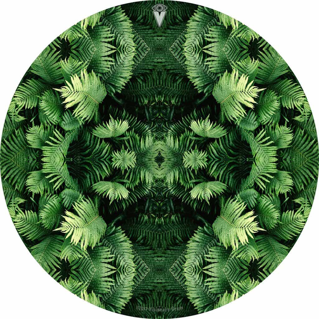 Fern Form design graphic drum skin by Visionary Drum; nature based drum art