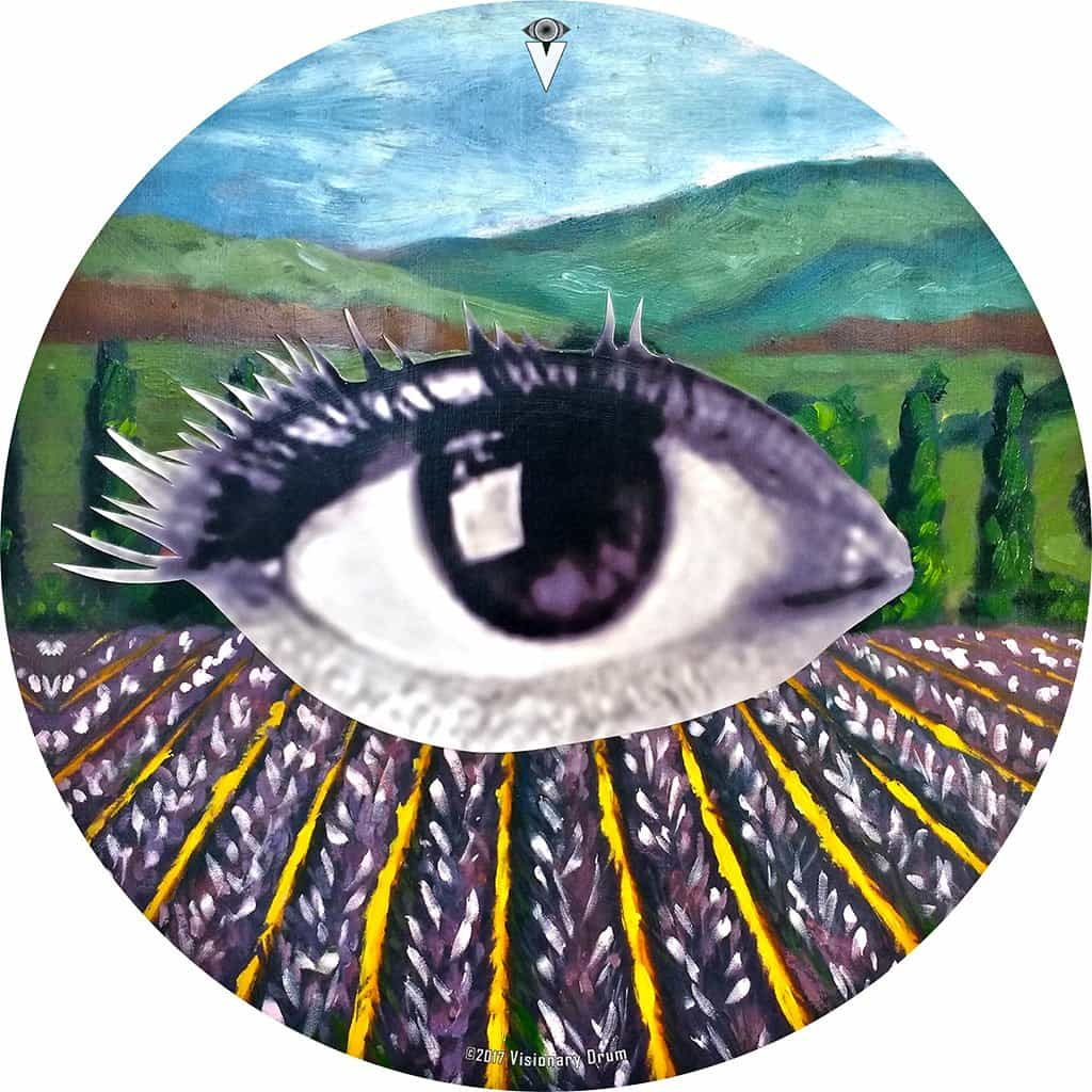 Field of Vision design graphic drum skin by Visionary Drum; eye drum art