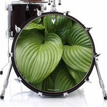 Garden Leaves design graphic drum skin on bass drum by Visionary Drum; green drum art