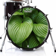 Garden Leaves Design Remo-Made Graphic Drum Head on Bass Drum; nature drum art