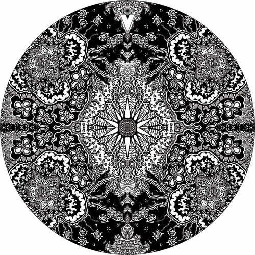 Growing Sun design graphic drum skin by Visionary Drum; black and white drum art