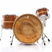 Tree growth rings graphic drum skin decal art on kit