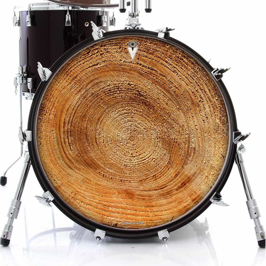 growth rings graphic drum head art all styles and sizes visionary drum. Black Bedroom Furniture Sets. Home Design Ideas