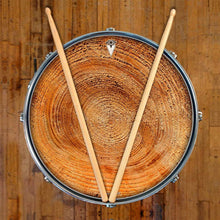 Tree growth rings graphic drum skin decal art on snare