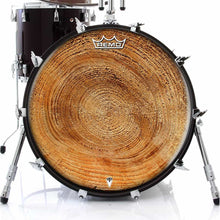 Tree growth rings graphic Remo drum head on bass
