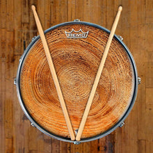 Tree growth rings graphic Remo drum head on snare