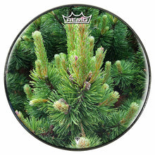 Happy Pine Design Remo-Made Graphic Drum Head by Visionary Drum; forest drum art