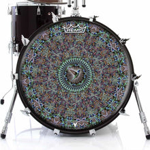Hummingbird Design Remo-Made Graphic Drum Head on Bass Drum; bird drum art