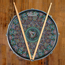 Hummingbird Design Remo-Made Graphic Drum Head on Snare Drum; mandala drum art