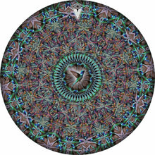 Hummingbird design graphic drum skin by Visionary Drum; nature drum art
