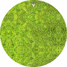 Moss design graphic drum skin by Visionary Drum; green drum art