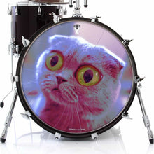 Mr. Peepers design graphic drum skin on bass drum head by Visionary Drum; cat with big eyes drum art