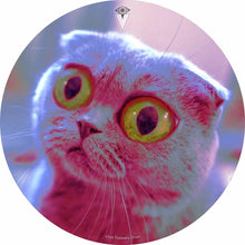 Mr. Peepers design graphic drum skin by Visionary Drum; cat drum art