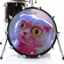 Mr. Peepers Design Remo-Made Graphic Drum Head on Bass Drum; cat meow drum art