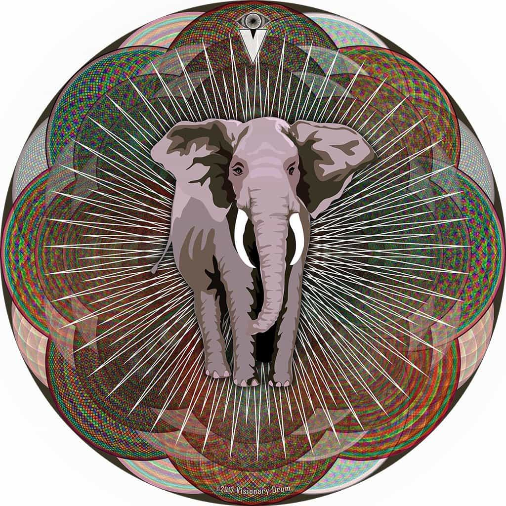 Mystic Elephant design graphic drum skin by Visionary Drum; elephant drum art