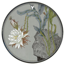 Night Blooming Cerus (gray) Graphic Drum Head Art - All Styles and Sizes - Art by Sally Nissen