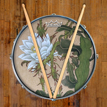 Night Blooming Cerus Graphic Drum Head Art - All Styles and Sizes - Art by Sally Nissen