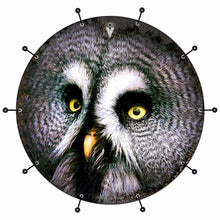 Owl bass face drum banner by Visionary Drum; nocturnal drum art