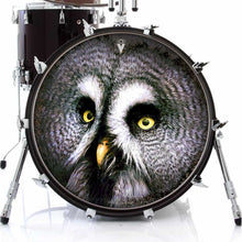 Owl design graphic drum skin on bass drum head by Visionary Drum; nature drum art