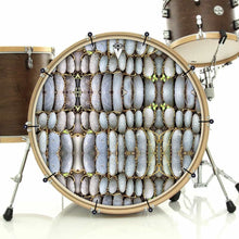 Rock Reflections bass face drum banner installed on bass drum; nature drum art