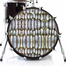 Rock Reflections stone design graphic drum skin on bass drum; nature drum art