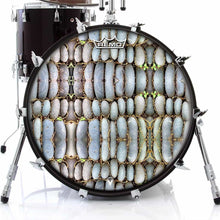 Rock Reflections Design Remo-Made Graphic Drum Head on Bass Drum; pastel drum art